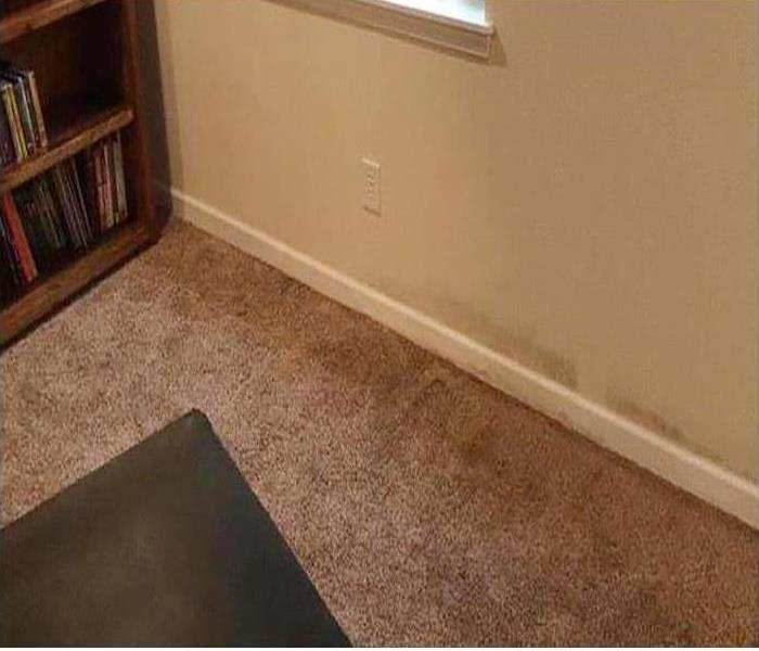 water-soaked wall, baseboard trim and brown carpet