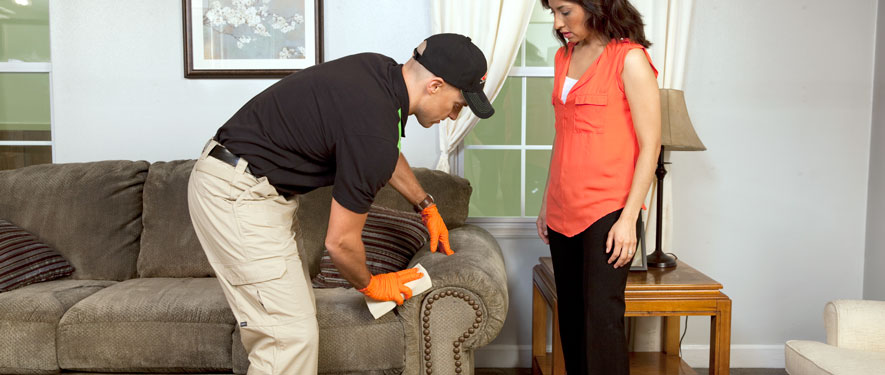 Clinton, NJ carpet upholstery cleaning