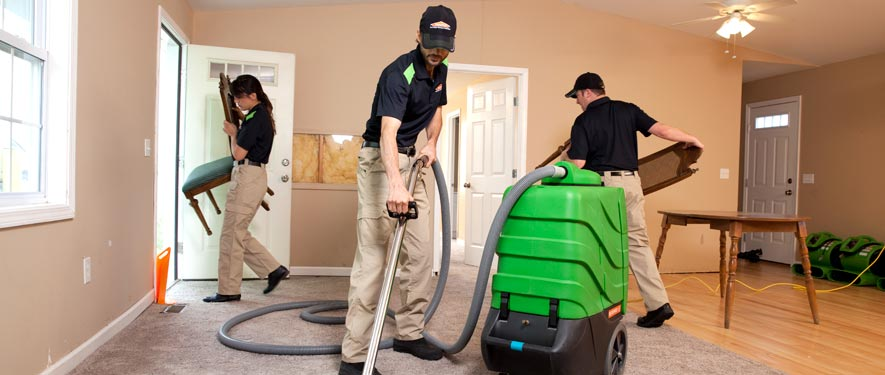 Clinton, NJ cleaning services